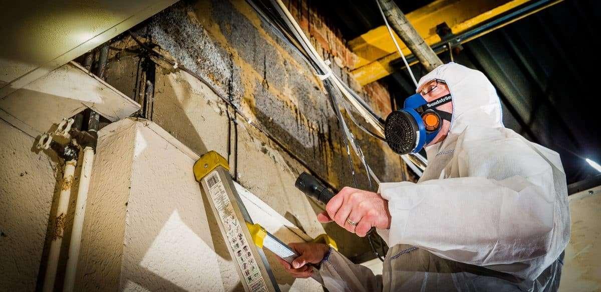 Asbestos demolition survey 1